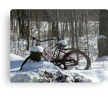 Take a ride Metal Print