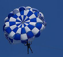 PARA GLIDER.  by ccrcats