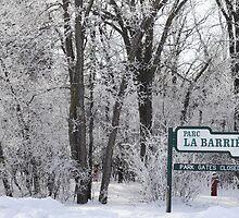 La Barriere Park by Geoffrey