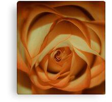 peach   Canvas Print