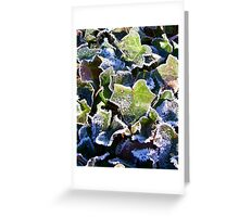 Frozen Ivy Greeting Card