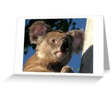 """Blinky Bill"" Greeting Card"
