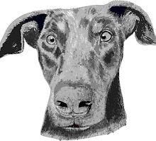 Cute dog portrait by rayemond
