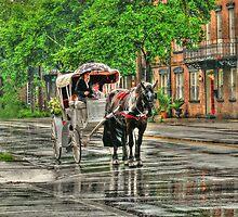 Savannah Reins  by John E Adams