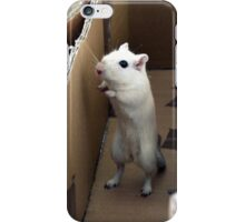 Gerbil 4 iPhone Case/Skin