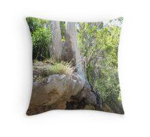 Eroded Tree Stump Throw Pillow
