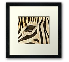Lux Lashes Framed Print