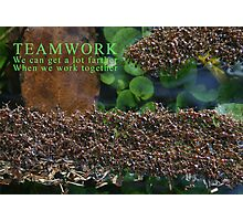 Teamwork Photographic Print