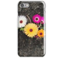 Ice plant flower iPhone Case/Skin