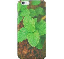 Fresh Mint v.2 iPhone Case/Skin