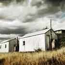 Shearers Sheds by Tony Lomas