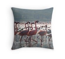 Flamingos at Lake Nakuru Throw Pillow