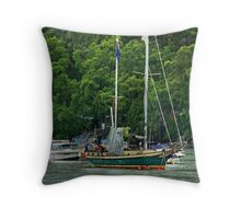 We wish... Throw Pillow