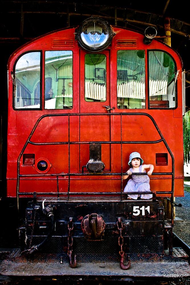 Travel by kaneko