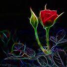 Classy Rose by Beckylee
