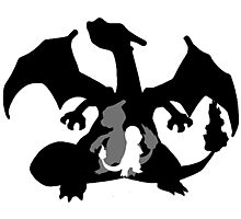 Charizard Evolution Photographic Print