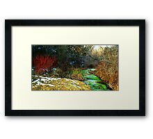TechniCOLORED NATURE  Framed Print