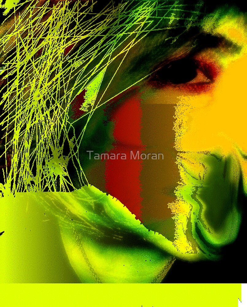 Distorted Perfection  by TAMARA MORAN