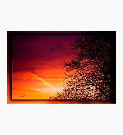 Sunset Kiss... Photographic Print