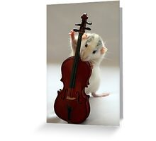 The Musician. Greeting Card