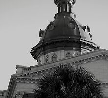 Columbia SC State House by Bjana Hoey