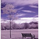 Meadows Infrared by Xpresso