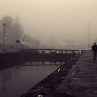 Locks at Fort Augustus by Tez Watson