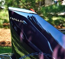 Cadillac Tail Fin by Eric Geissinger