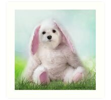 Snowdrop the Maltese - Dressing Up for Easter ! Art Print