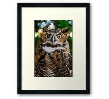 Who Me? Framed Print