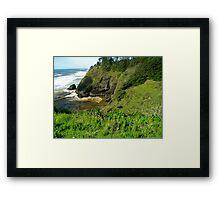 Washington coastline Framed Print
