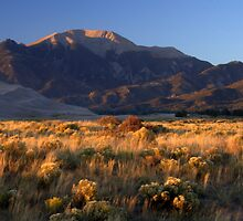 Great Sand Dunes National Park by Paul Gana