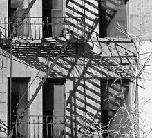 City Building Art in Black and White by Judith Oppenheimer