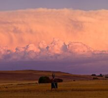 Evening Storm by Helen Simpson
