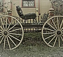 The Horse Drawn Carriage by Thom Zehrfeld