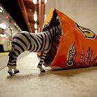 Mr. Zebra Gets Snackin' by Damian Silliman