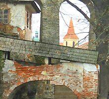 The Broken Bridge by Alexandra Lavizzari