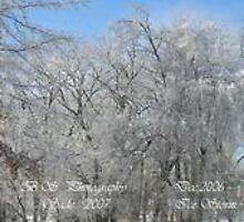 Icy Tree tops by Sade