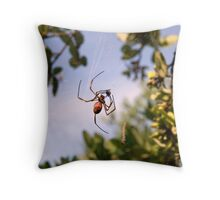 Spiders packed lunch Throw Pillow