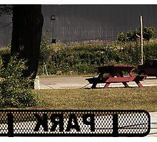 The Park  Photographic Print