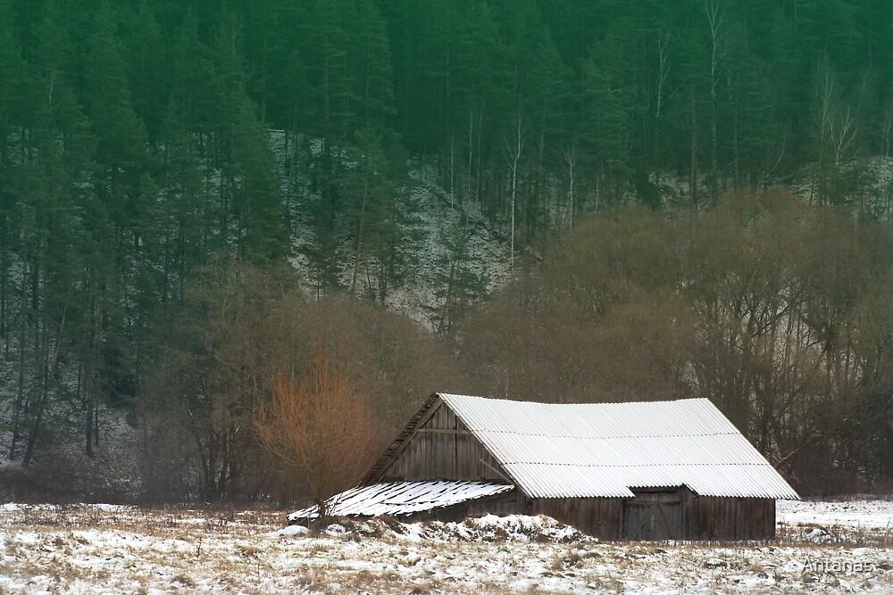 The Old Farm House by Antanas