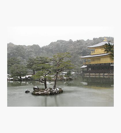 A Cold Day in the Gardens of Kyoto Photographic Print