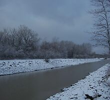 Winter on the Erie Canal by Debra  Butler