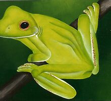 Green Tree Frog by Donna Mearns