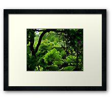 Mystics Garden Framed Print