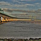 Second Severn River Crossing 2 by PaulHealey