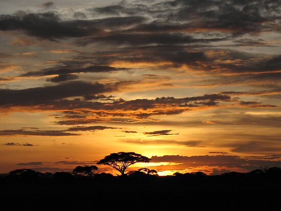 Sunset over Amboseli Park by jacqi