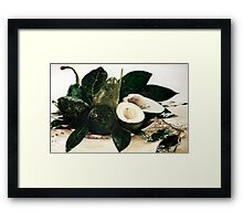 Avocados Framed Print