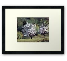 Spring on Franklin Road Framed Print
