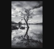 Tree Reflection at Ullswater, Lake District T-Shirt